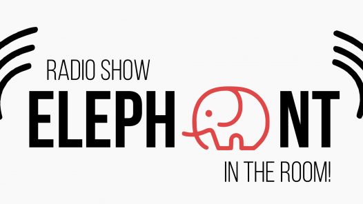 Elephant In The Room logo